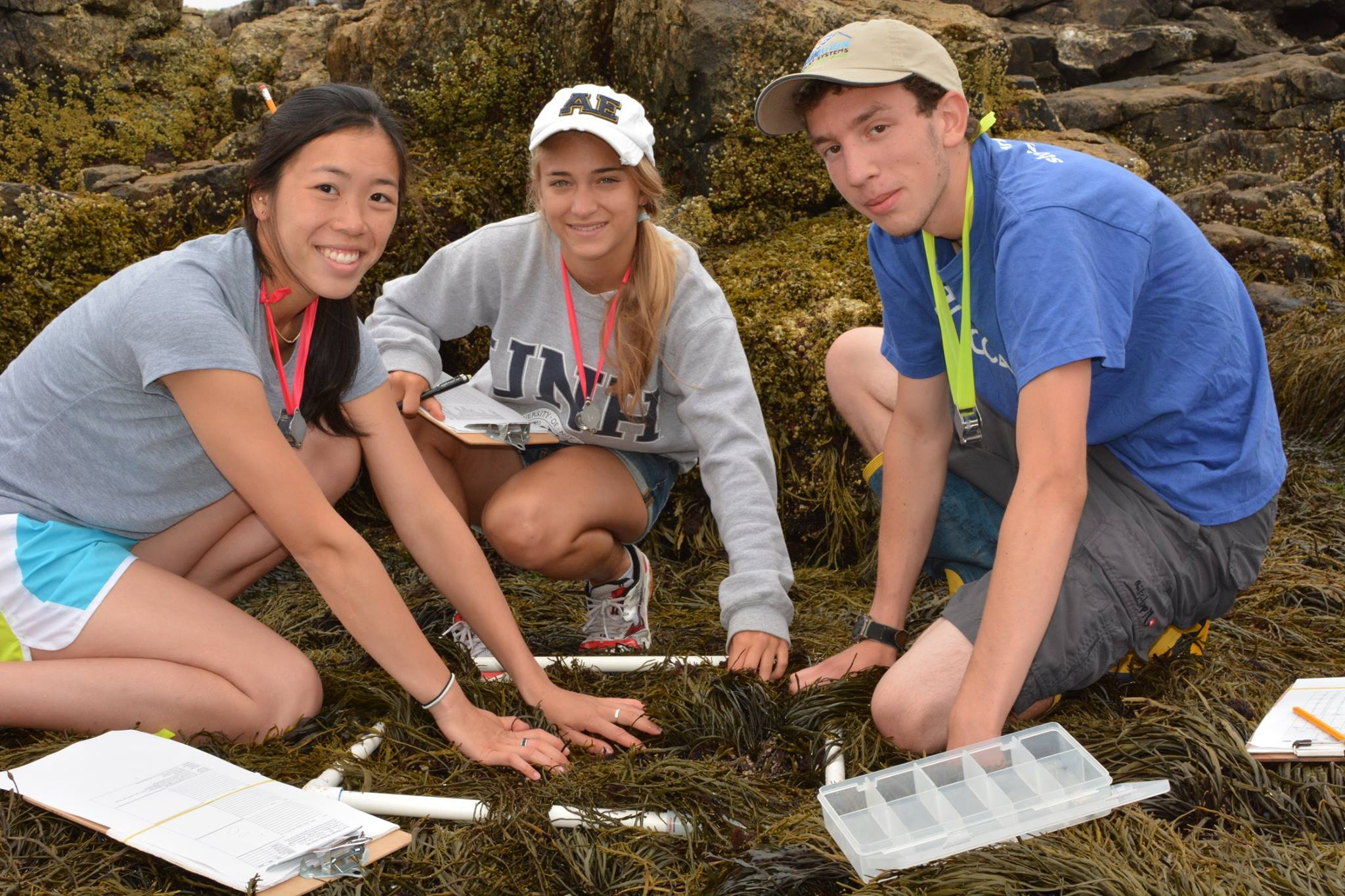 Photo of intertidal ecology interns collecting transect data in the field on Appledore Island