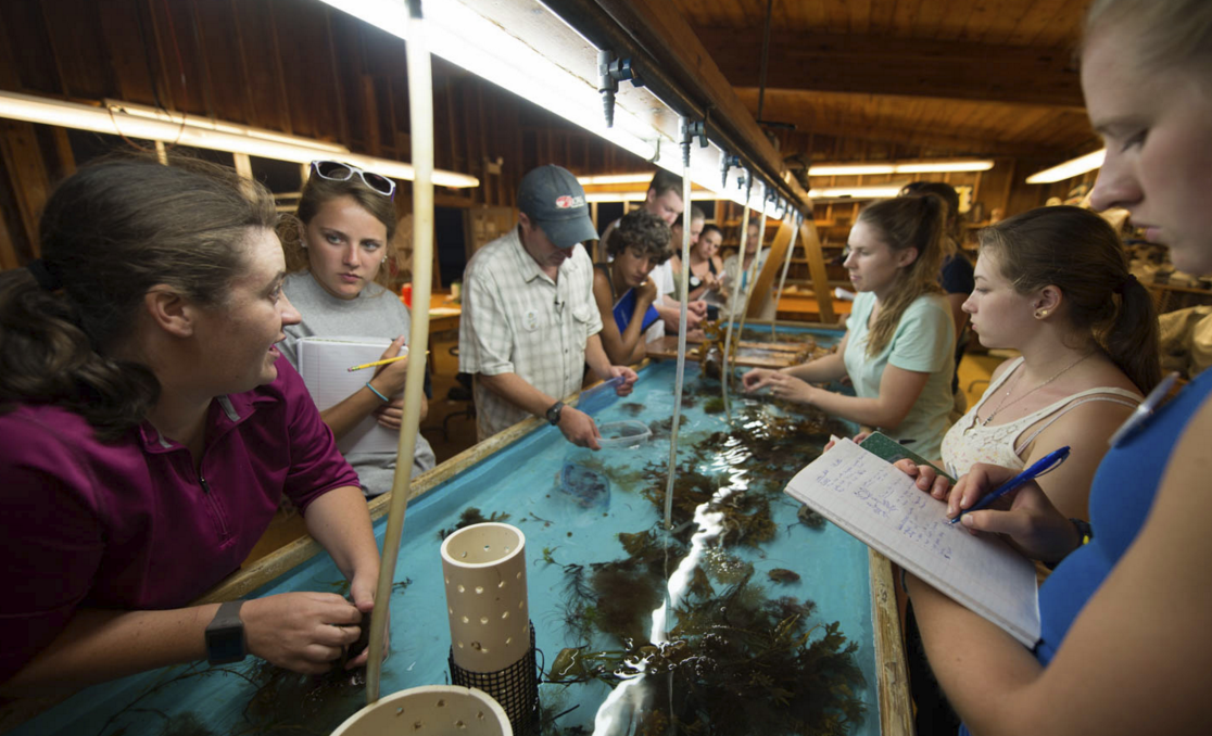 Students around the Lab Sea Table