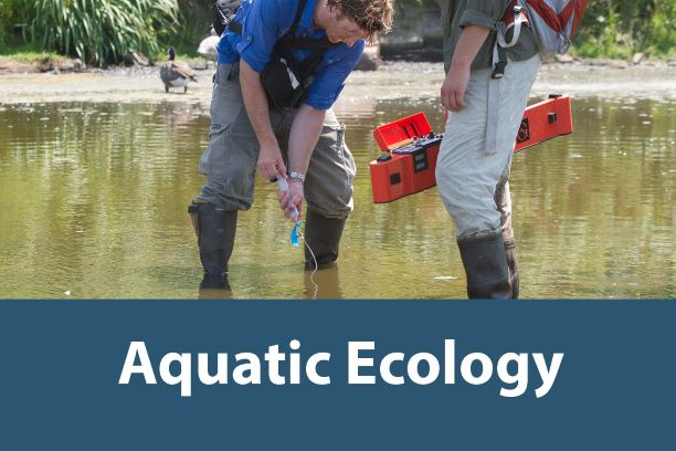 Click on this button to learn more about the Aquatic Ecology Internship