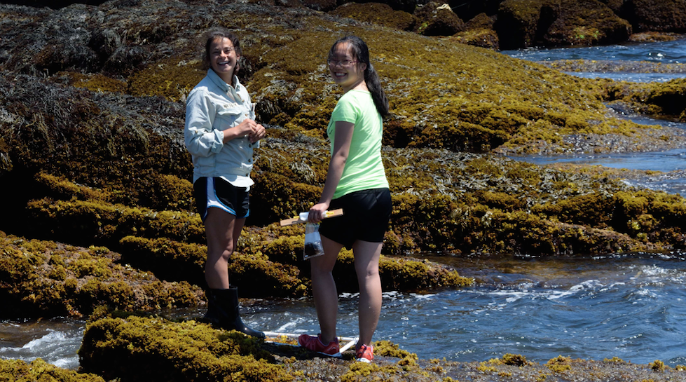 photo of smiling shoals students and friends in the intertidal