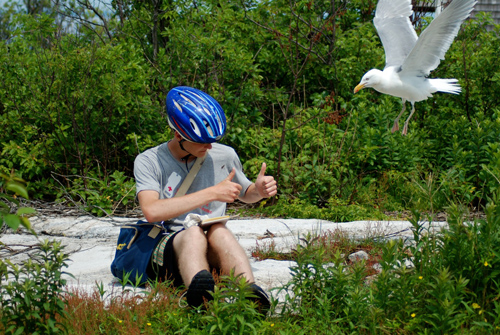 Photo of a Shoals student in the field on Appledore Island (by Sarah MacLean).