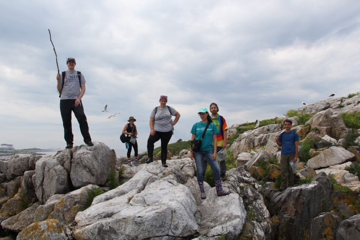 Photo of Coastal Habitat Field Research methods students on the rock of Appledore island