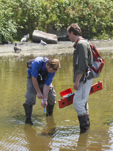 photo of Coastal Habitat Field Research Methods students collecting a water sample