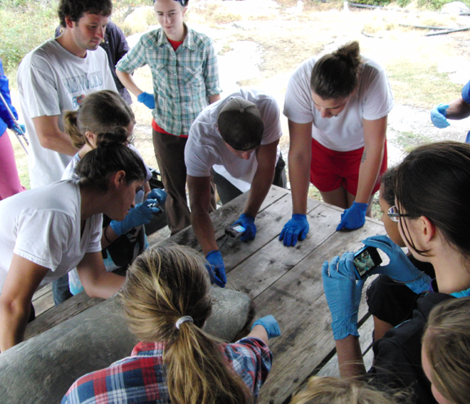Photo of students at the dissection table during Anatomy and Function of Marine Vertebrates